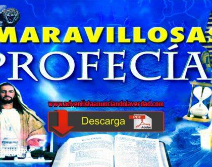 MARAVILLOSA PROFECIA [ 144000 ]
