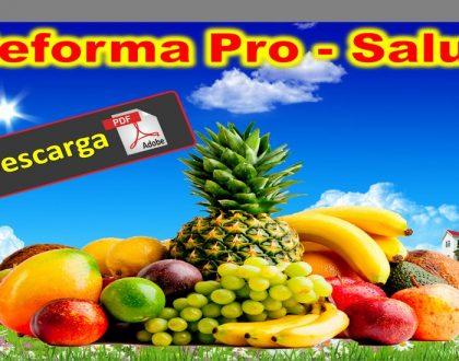REFORMA PRO - SALUD [ 30 Recetas saludables ]